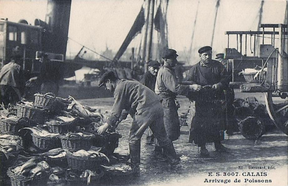 Calais arrivage du poisson