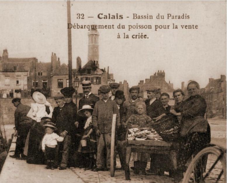 Calais debarquement du poisson top