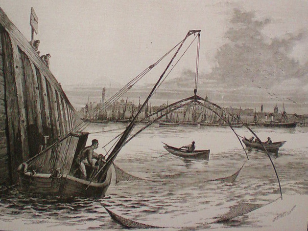 Calais peche au carreau